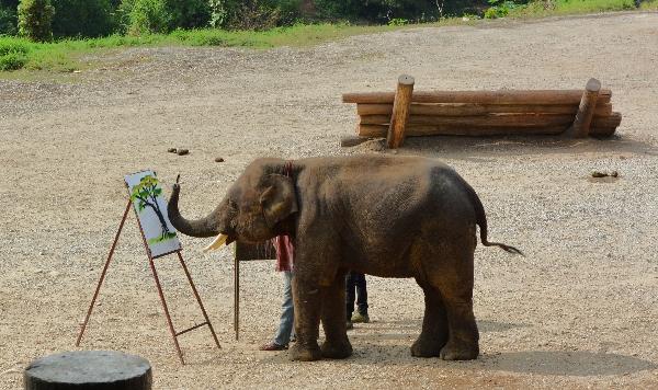 Elefant beim Malen
