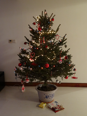 Christbaum Shenyang 2012